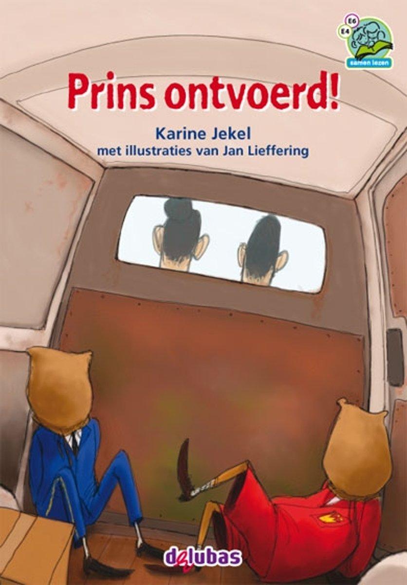 kinderboek Prins ontvoerd van Karine Jekel